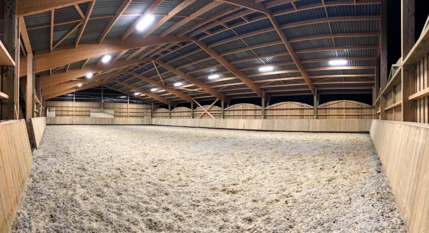 Éclairage manège équestre élevage chevaux de dressage Marie Cottereau (76 - Auzouville-Auberbosc)