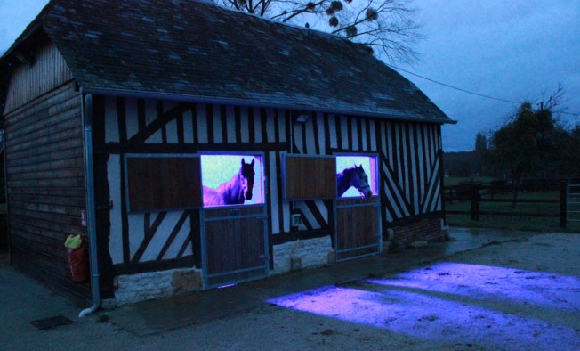 Stud Lieu Fergant : lighting mares by PROXIMAL