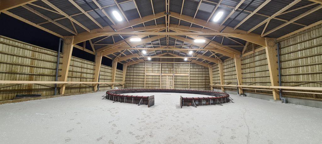 Théâtre équestre Zingaro : éclairage LED équin par PROXIMAL